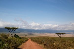 The majestic Ngorongoro national park